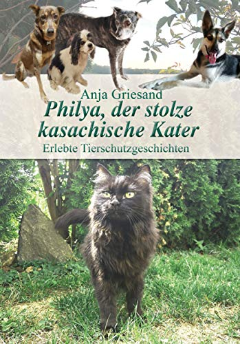 Philya, der stolze kasachische Kater