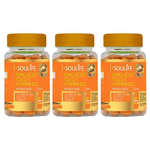 Kit 3 Ferro, Ácido Fólico e Vitamina B12 250mg - 120 Cáps - Soulife