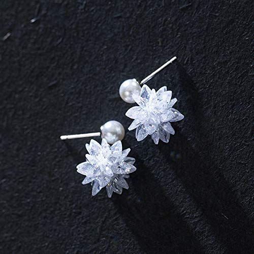 HUYV Stud Earrings For Woman,Fashion Ice Crystal Flower Pearl Earrings 925 Silver Stud Earrings For Christmas Birthday Jewelry Gift Men Girls
