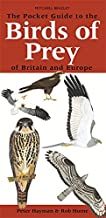 Pocket Guide to Birds of Prey