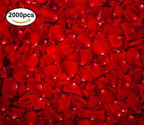 Pétales de Roses Rouges en Soie 2000 Pièces - Artificielle inodore Petale de rose Parfait pour la Saint-Valentin decoration - Célébrations et Fêtes de Mariage - Moments Romantiques deco table
