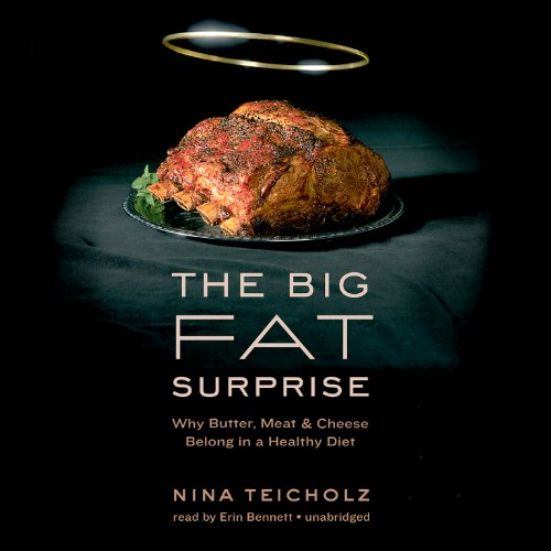 The Big Fat Surprise audiobook cover art