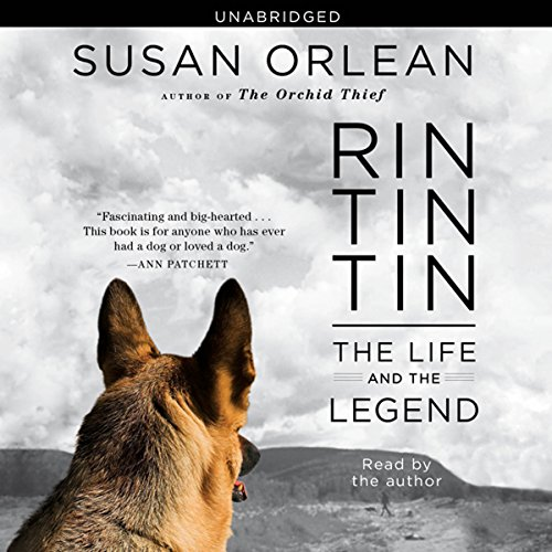 Rin Tin Tin audiobook cover art