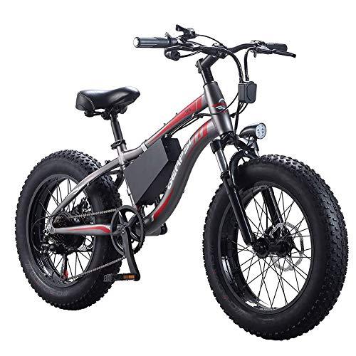 D&XQX 20 Pulgadas Bicicleta eléctrica 350W 36V 10AH de Litio extraíble de...