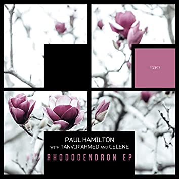 Rhododendron EP