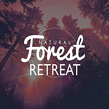 Natural Forest Retreat