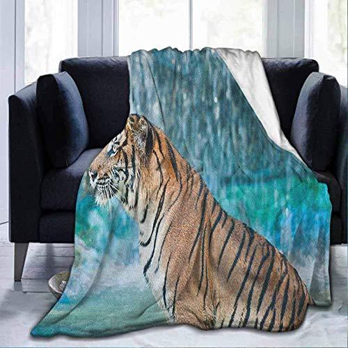 Amanda Walter Warme gemütliche Plüsch Tiger Feline Beast im Teich auf der Suche nach Beute Sumatra Indonesien Szenen Türkis Hellbraun schwarz für Bett C Decke