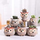 DIFIER Juego de 6 orinales de cerámica para plantas en miniatura (A)