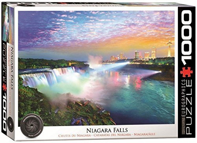 contador genuino EuroGraphics Niagara Falls Falls Falls Puzzle (1000 Piece) by EuroGraphics  servicio honesto