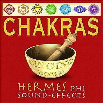 Chakras (Singing Bowl)