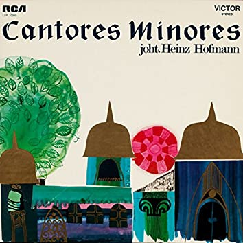 Cantores Minores