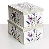 SET DE DOS Cajas de almacenamiento en cartón, tamaño grand