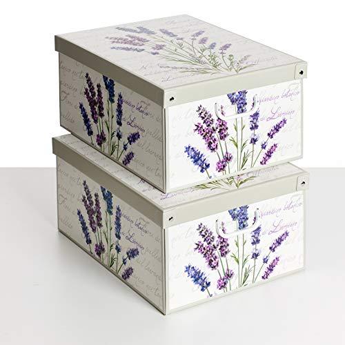 SET DE DOS Cajas de almacenamiento en cartón, tamaño grande, 2 unidades, modelo LAVANDA