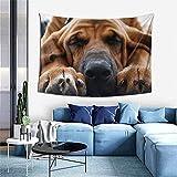 Tapiz de ropa de cama de perro Bloodhound, colgante de pared con impresión 3D, tapiz de pared para dormitorio, sala de estar, dormitorio (40 x 60 pulgadas)