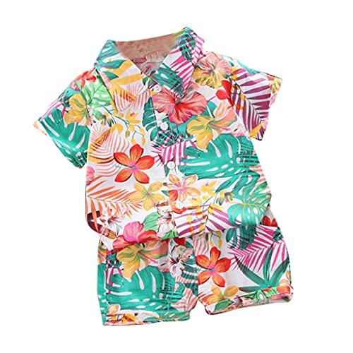 HANBOLI Conjunto de Ropa de Verano para bebés y niños pequeños, Camisetas con Estampado de patrón de Manga Corta y Bermudas, Conjunto de Ropa de 2 Piezas