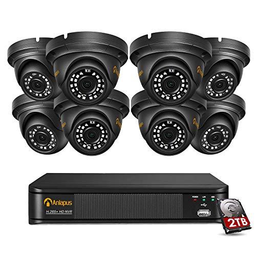 Anlapus 8CH H.265+ 5MP PoE NVR Video Überwachungssystem mit 2TB Festplatte und (8) 5MP IP Dome Überwachungskamera Set für Außen und Innen, Metallgehäuse