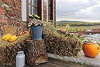 の農家の家の背景干し草の切り株の写真の背景と10x7フィートのヴィンテージのホームウィンドウ田舎のスタイル素朴なテーマパーティーの装飾農家の大人の肖像画写真撮影スタジオの小道具