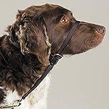Gentle Leader Dog Training Headcollars Safely Teach...