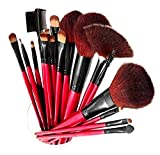 SHANY Professional 12 - Piece Natural Goat and Badger Cosmetic Brush Set with...