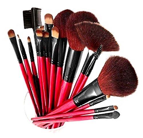 SHANY Kit professionnel de pinceaux cosmétiques 13 pièces avec 12 pinceaux et une housse Rouge