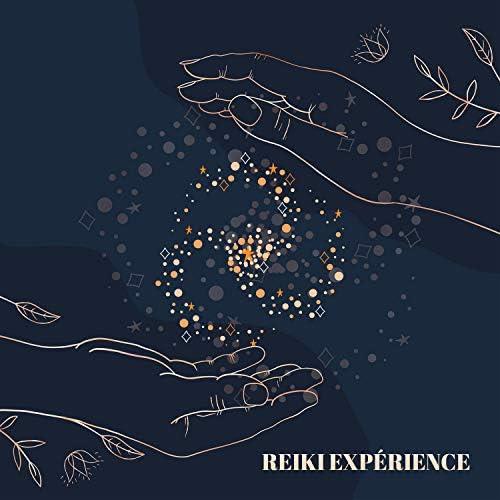 Académie de bien-être, Ensemble de Musique Zen Relaxante & Reiki Unité de Guérison