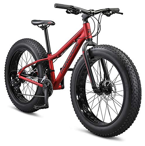 Mongoose Argus Trail Youth Fat Tire Mountain Bike, 24-Inch Wheels, Small 15-Inch Aluminum Hardtail Frame, Mechanical Disc Brakes, 2x8 Drivetrain, Rapid Fire Shifters, Red