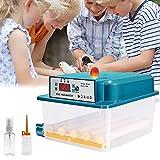 Incubateur Oeufs Couveuse Automatique 16 œufs Retournement Automatique Mini Appareil à Couveuse Température Réglable...