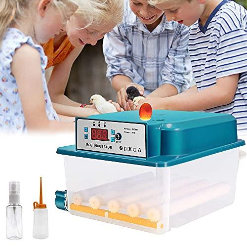 S SMAUTOP Inkubator, Vollautomatische Brutmaschine 16 Eier, Brutapparat mit LED Temperaturanzeige und Präzieser Temperaturfühler, Temperatur, für für Chicken Duck Bird Quail