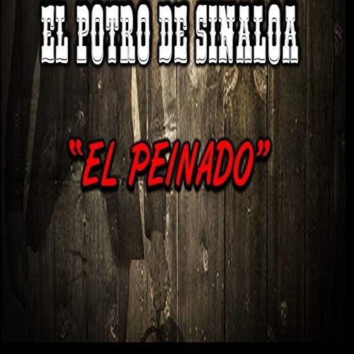 El Potro De Sinaloa feat. Los Canelos de Durango