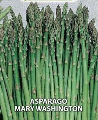 Semi Sementi Asparago Mary Washington Ortaggi Vegetali