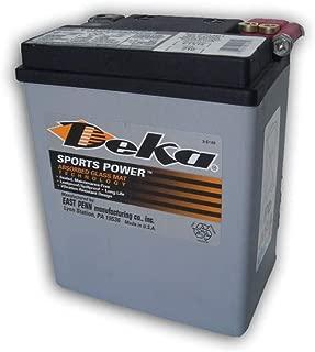 Deka Power Sports ETX15 battery