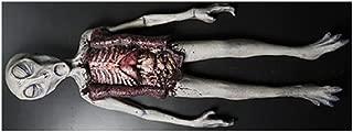 Alien Autopsy Foam Latex Tabletop Two Piece Halloween Decoration Prop Décor