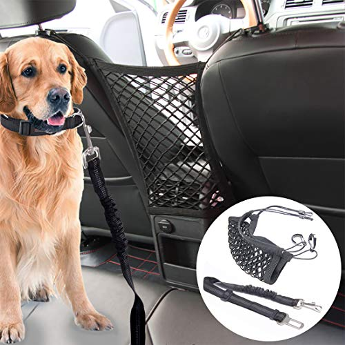 FORD GRAND C-MAX 10-On TUBULAR DOG PET GUARD BARRIER