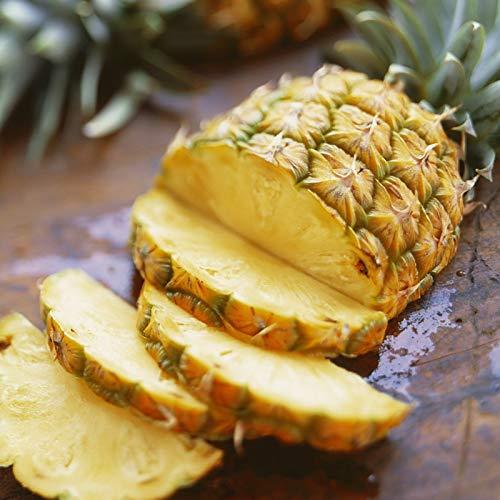 TOYHEART 100 Piezas De Semillas De Frutas De Primera Calidad, Semillas De Piña, Semillas De Granja Naturales Fragantes Nutritivas Y Perfectas Cálidas Para Jardín Amarillo