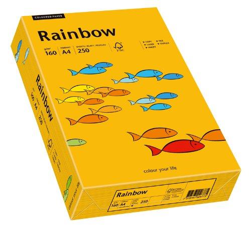 Papyrus 88042417 Drucker-/Kopierpapier farbig: Rainbow 160 g/m² DIN-A4, 250 Blatt Buntpapier, mittelorange.