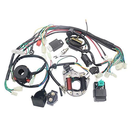 Lodenlli Bobina de estator eléctrica CDI Arnés de cableado para ATV KLX de 4 Tiempos 50cc 70cc 110cc 125cc Quad Bike Buggy Go Kart Pit Dirt Bikes