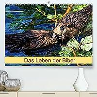 Das Leben der Biber (Premium, hochwertiger DIN A2 Wandkalender 2022, Kunstdruck in Hochglanz): Groesste Nagetier in Europa (Monatskalender, 14 Seiten )