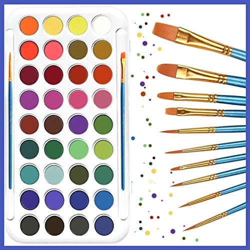 321OU Watercolor Paint Set, 36 Colors Professional Watercolor Paint with 12 Pcs Watercolor Artist Set Brush for Kids Adults Artists Students