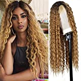 Ebingoo 26 inches Fashion Brown Ombre Lace Front Wig Long curly water wave wigs Natural Replacement Full Wigs for Black Women for cosplay…