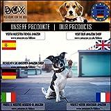 Hundehalsband Halsung aus Premium-Nylon verschiedene Farben und Groessen XS, S, M, L, XL: verstellbar, stabil, bequem, weich, farbig, fuer grosse und kleine Hunde (Leine und Geschirr separat erhaeltlich) (Farbe Schwarz, Größe XS – 1,0 x 21-30 cm) - 9