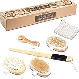 5 in 1 Body Brush Set - Wet or Dry Brush, Back Brush, Shower & Bath Brush Scrubber with Non-Slip Long handle, Exfoliating Face Brush Massager, Sisal Bag, Cellulite Massager, Natural Bristle, Gift Set
