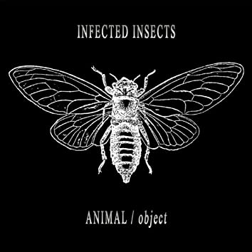 Infected Insects