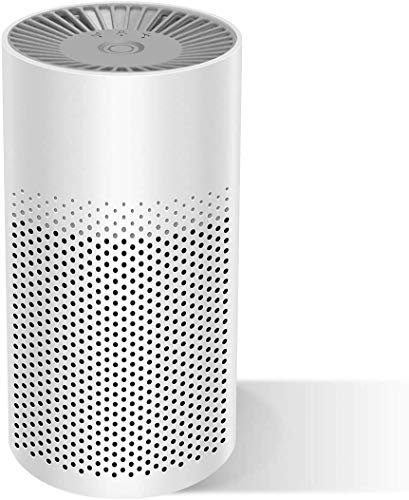 isinlive Portable Air Purifier for Home Bedroom Office Desktop Pet Room, 3-in-1 True HEPA Mini Purifier, Safe Mini Air Cleaner