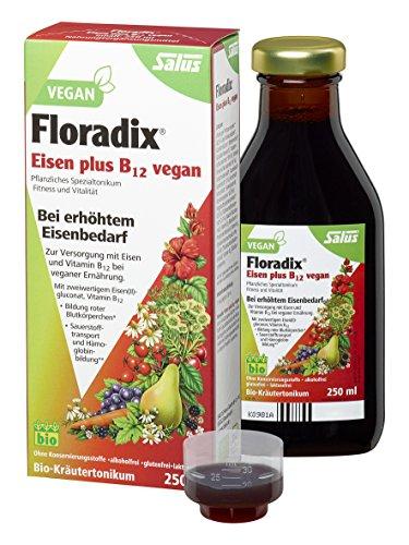 Floradix Eisen + B12 Bio-Tonikum (250 ml)