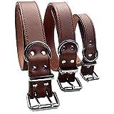 LAOSHIZI Collares básicos para Perros Ajustable Perros pequeños, medianos y Grandes Collar de Perro Castaño