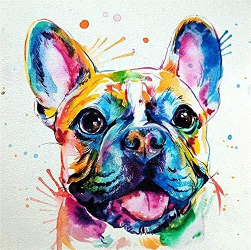 XJXJ New Paint by Numbers for Adults Children - Colorful French Bulldog - DIY Digital Painting by Numbers Kits On Canvas Paint by Numbers Adults