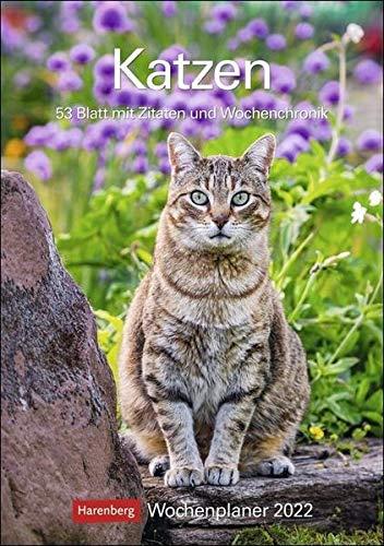 Katzen Wochenplaner 2022 - Wandkalender mit Wochenkalendarium und viel Platz für Termine und Notizen - 53 Blatt mit Zitaten und Wochenchronik - 25 x 35,5 cm