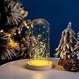 Glasseam Cloche de Cúpula de Vidrio Grande Transparente Cúpula de Cristal con Luz LED de Hadas...