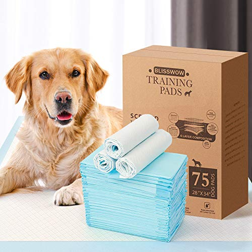 Blisswow Heavy Duty Regular Pet Dog and Puppy Training Pads - Pack of 80, 24 x 23 Inches