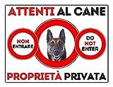 snogghy targa cartello attenti al cane pastore belga (30 x 20 cm)